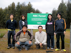 NEC forest